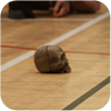 Trollball d'hiver 2011